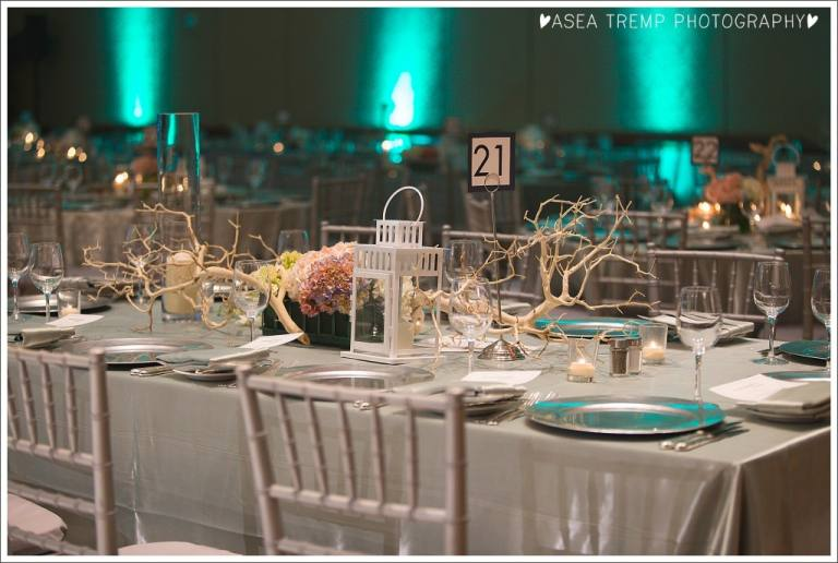 Evening of Wishes Make a Wish OCIE 2014 Asea Tremp Photography-0379_BLOG